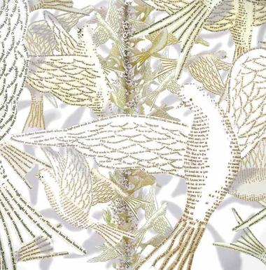doves2